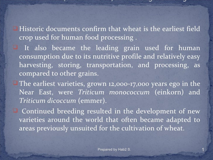  Historic documents confirm that wheat is the earliest field  crop used for human food processing . It also became the l...