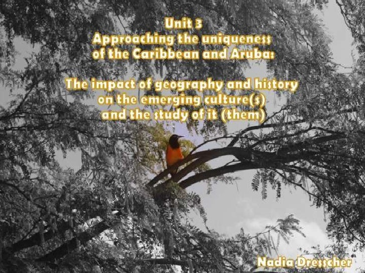 Unit 3. Approaching the uniqueness of Islands, the Caribbean and Aruba