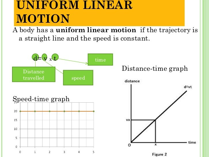 Unit 3 Motion And Movement