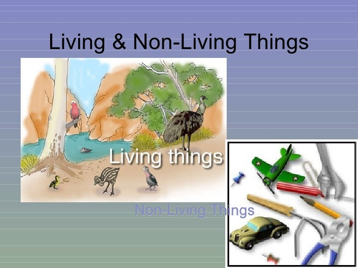 Living & Non-Living Things Non-Living Things