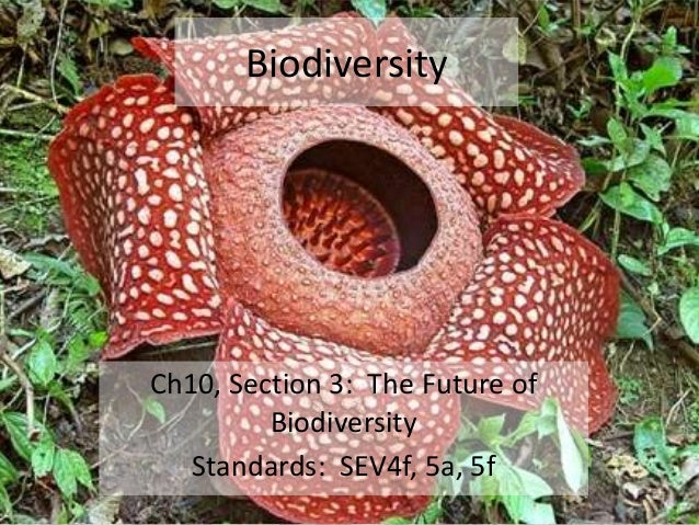 Biodiversity  Ch10, Section 3: The Future of Biodiversity Standards: SEV4f, 5a, 5f