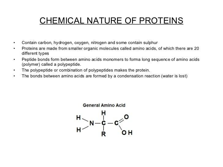 CHEMICAL NATURE OF PROTEINS <ul><li>Contain carbon, hydrogen, oxygen, nitrogen and some contain sulphur  </li></ul><ul><li...