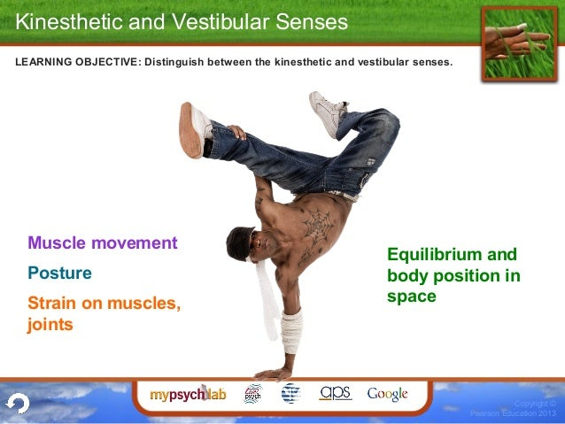 """what is kinesthesis and vestibular sense The vestibular sense is basically your sense of balance the name of this particular sense comes from a latin word that means """"entrance"""" or """"chamber"""" the structures for this sense are located in the innermost chamber of the ear."""