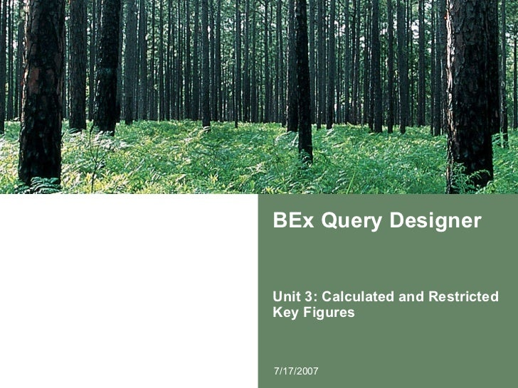 BEx Query Designer Unit 3: Calculated and Restricted Key Figures 7/17/2007