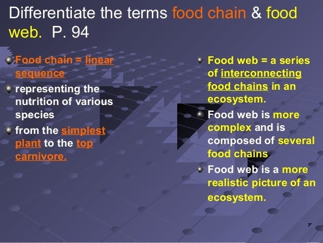 Differentiate Food Chain And Food Web