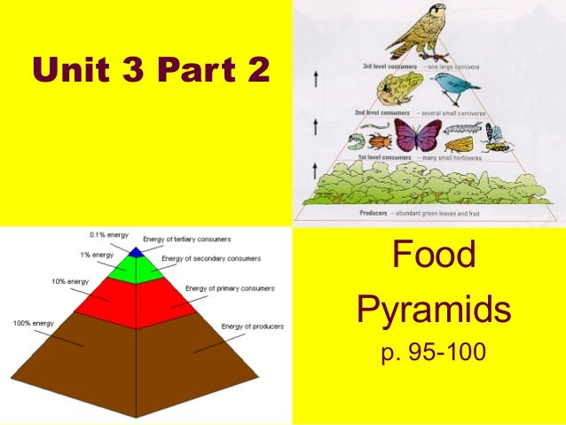 Unit 3 Part 2                  Food                Pyramids                 p. 95-100