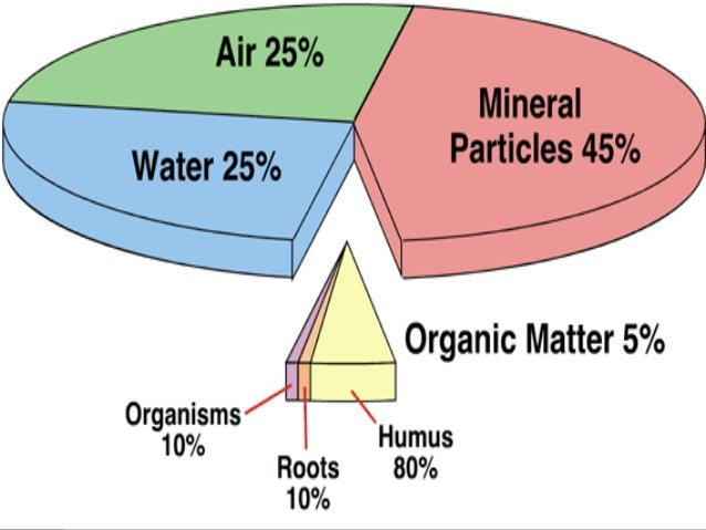 Unit 3 lesson 4a soil 1 for Four main components of soil