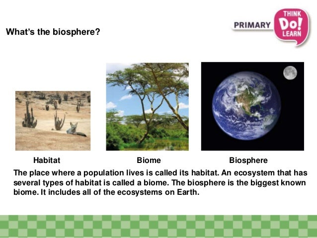whats the biosphere