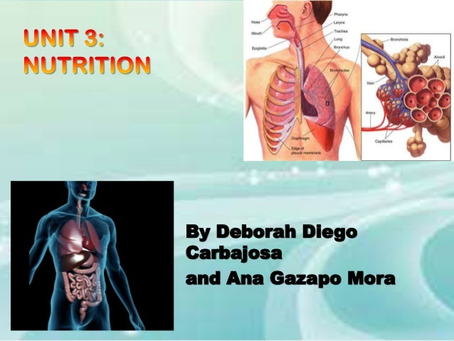 By Deborah Diego Carbajosa and Ana Gazapo Mora