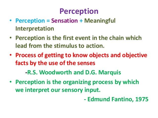 perception in psychology Sensation and perception is the seventh program in the discovering psychology series this program unravels the complex process of how we see you'll learn about visual illusions and what causes them, the biology of perception, the visual pathway, and how the human brain processes information during perception.