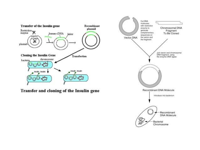 Unit4 biotechnology