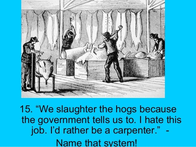 """15. """"We slaughter the hogs because the government tells us to. I hate this job. I'd rather be a carpenter."""" - Name that sy..."""