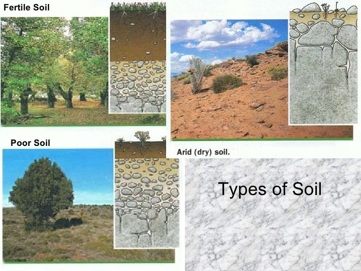 Minerals rocks for Soil minerals