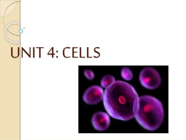 UNIT 4: CELLS