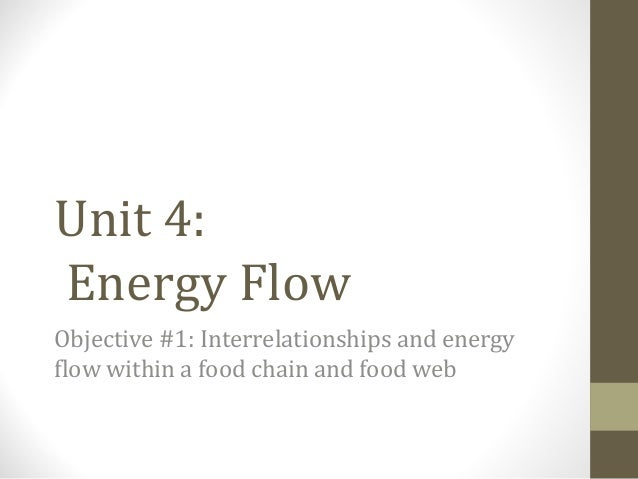 Unit 4: Energy Flow Objective #1: Interrelationships and energy flow within a food chain and food web