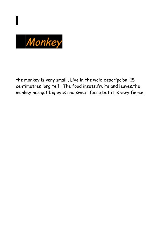 Monkey  the monkey is very small . Live in the wold descripcion 15 centimetres long teil . The food insets,fruite and leav...