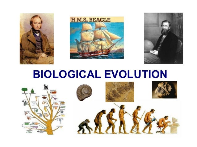 Unit5 biological evolution.