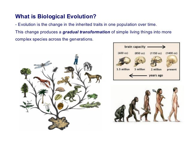 Evolution (a consolidated ppt).