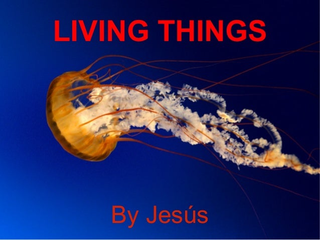 LIVING THINGS  By Jesús