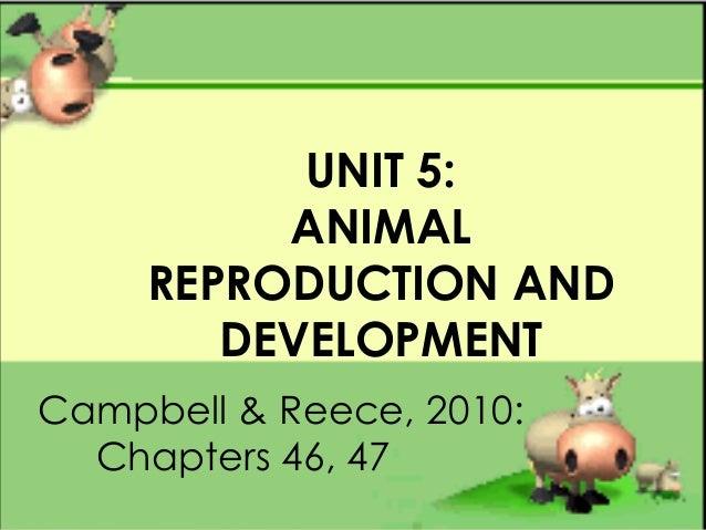 UNIT 5:ANIMALREPRODUCTION ANDDEVELOPMENTCampbell & Reece, 2010:Chapters 46, 47