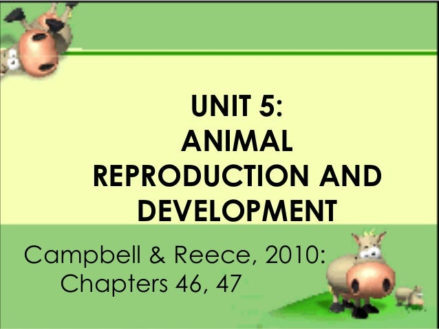 UNIT 5:ANIMALREPRODUCTION ANDDEVELOPMENTCampbell & Reece, 2010:Chapters 46, 47