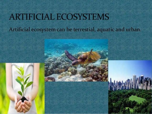 ARTIFICIAL ECOSYSTEM EBOOK DOWNLOAD