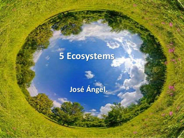5 Ecosystems José Ángel.