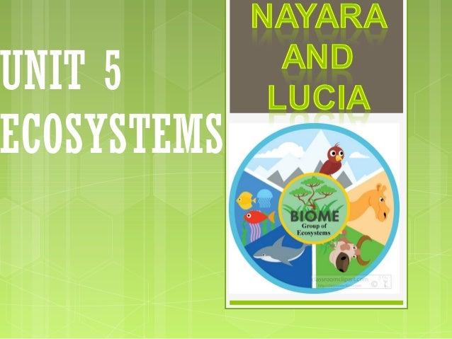 UNIT 5 ECOSYSTEMS
