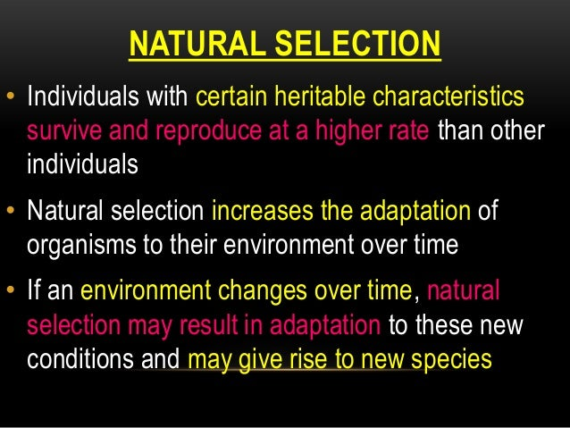 Natural Selection Tend To Decrease