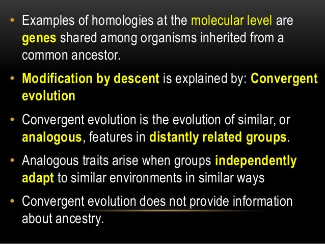 Difference Between Natural Selection And Theory Of Evolution