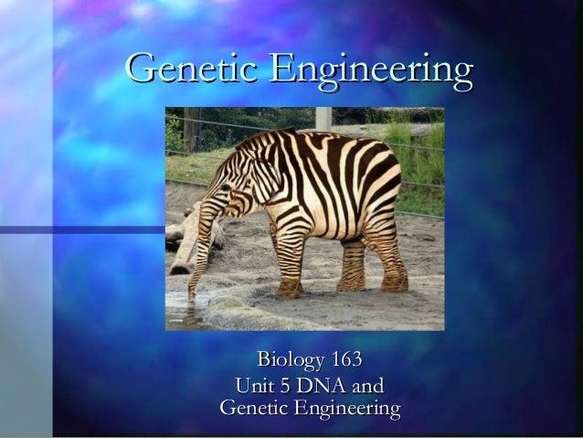 Genetic Engineering  Biology 163 Unit 5 DNA and Genetic Engineering