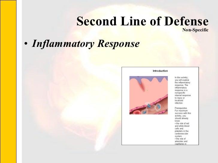 Second Line of Defense <ul><li>Inflammatory Response </li></ul>Non-Specific