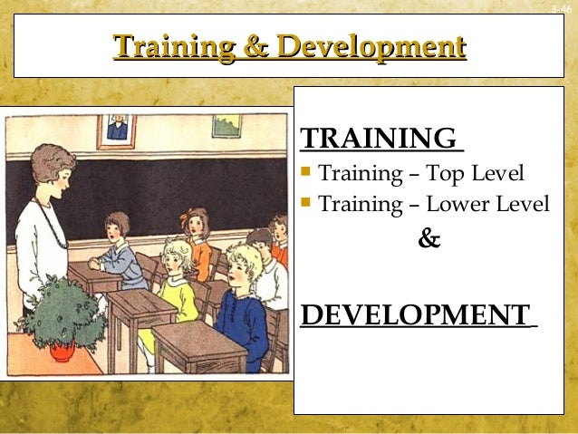 3-46Training & DevelopmentTraining & DevelopmentTRAINING Training – Top Level Training – Lower Level&DEVELOPMENT