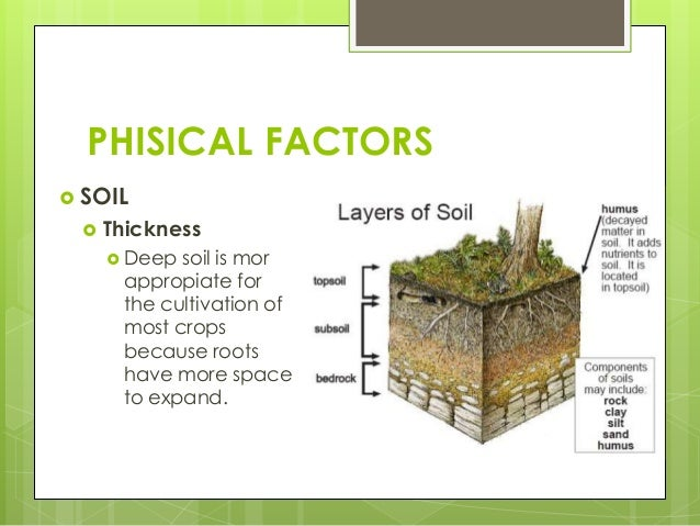 Unit 6 primary sector for Soil quality definition