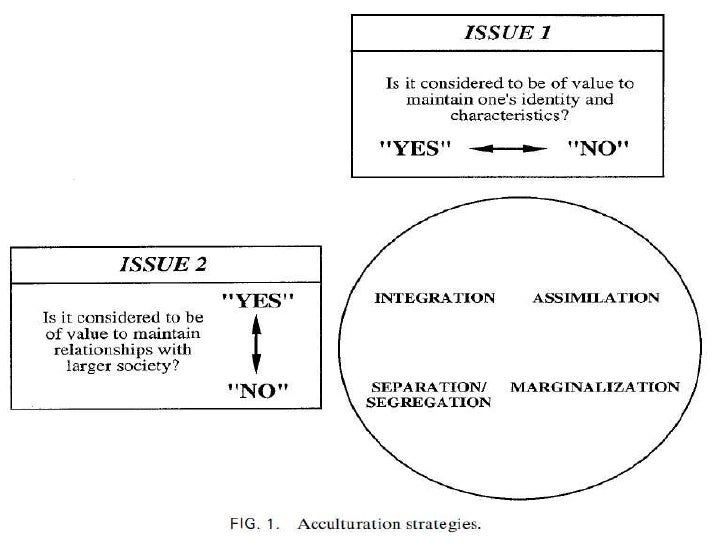 acculturation strategies One key feature of all acculturation phenomena is the variability with which they take place: there are large group and individual differences in the ways in which people seek to go about their acculturation (termed acculturation strategies), and in the degree to which they achieve satisfactory adaptations.