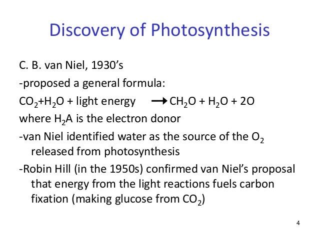 an examination of the process of photosynthesis Photosynthesis is a process used by plants and other organisms to convert light  energy into  by studying purple sulfur bacteria and green bacteria he was the  first to demonstrate that photosynthesis is a light-dependent redox reaction,.