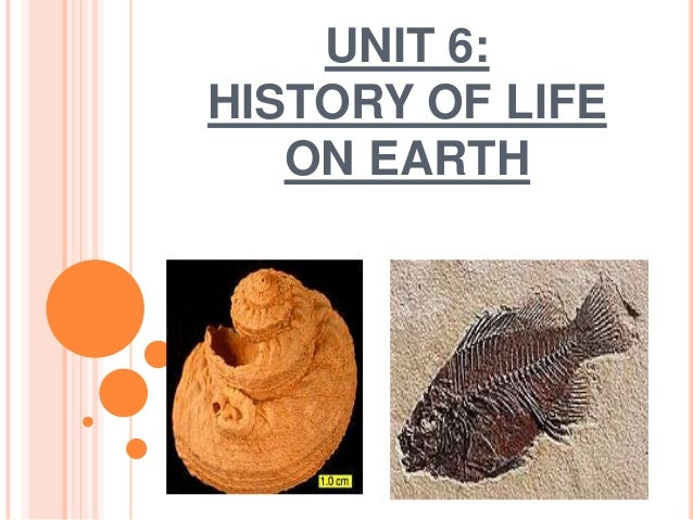 UNIT 6:HISTORY OF LIFE   ON EARTH