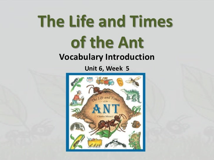 The Life and Times of the Ant<br />Vocabulary Introduction<br />Unit 6, Week  5<br />