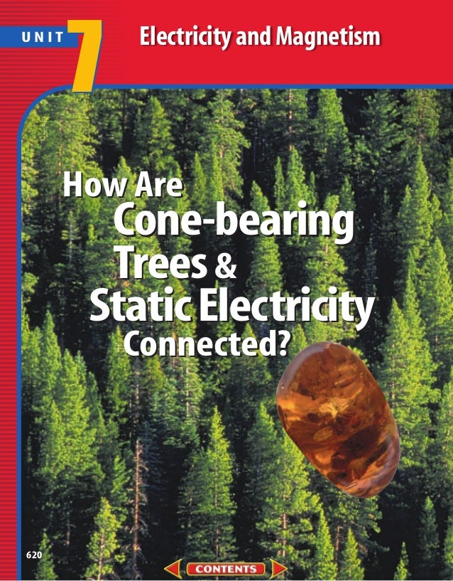 UNIT       7   Electricity and Magnetism      How Are        Cone-bearing        Trees &       Static Electricity         ...