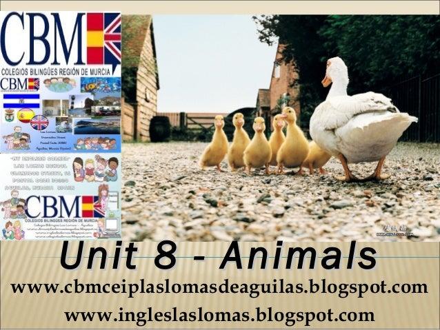 Unit 8 - Animalswww.cbmceiplaslomasdeaguilas.blogspot.com    www.ingleslaslomas.blogspot.com