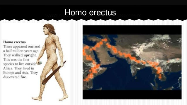 3- Paleolithic beliefs and art
