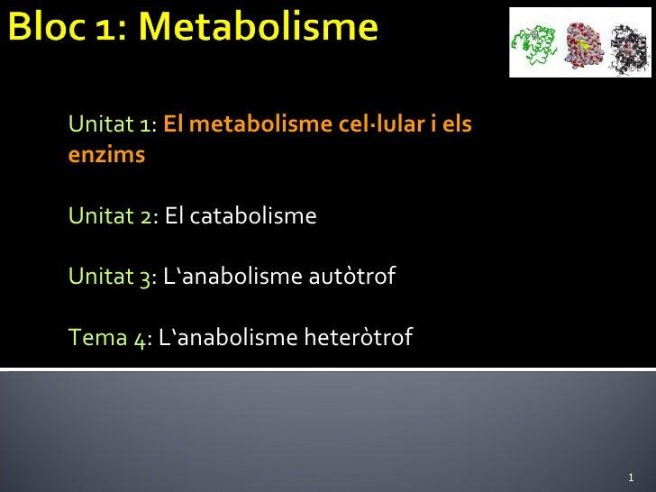 Unitat 1 :  El metabolisme cel·lular i els  enzims Unitat 2 : El catabolisme Unitat 3 : L'anabolisme autòtrof Tema 4 : L'a...