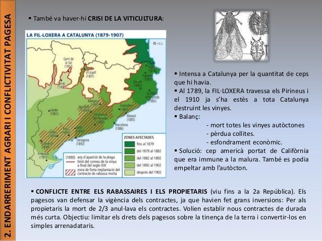 2. ENDARRERIMENT AGRARI I CONFLICTIVITAT PAGESA   També va haver-hi CRISI DE LA VITICULTURA:   Intensa a Catalunya per l...