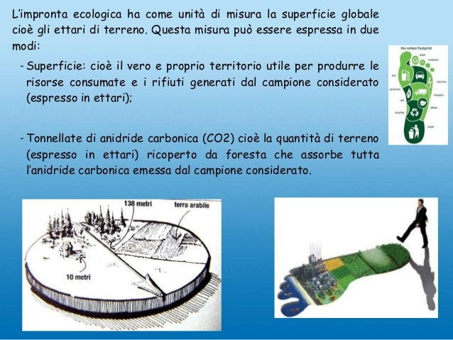 L'impronta ecologica ha come unità di misura la superficie globale cioè gli ettari di terreno. Questa misura può essere es...