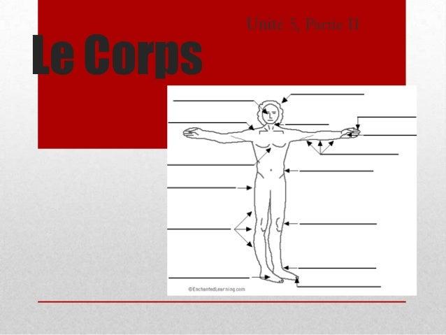 Unité 5, Partie IILe Corps