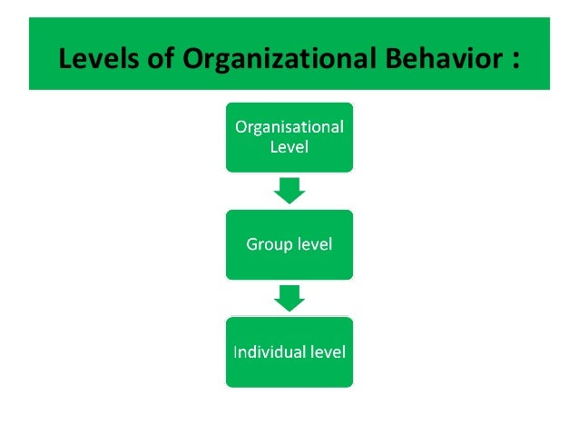 ob unit i studyguide View notes - ahs 401 midterm studyguide from ahs 401 at university of alabama at birmingham ahs 401 midterm studyguide define organizational behavioral (ob)-the.