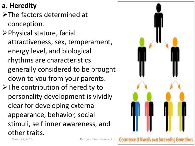 a. Heredity The factors determined at conception. Physical stature, facial attractiveness, sex, temperament, energy leve...