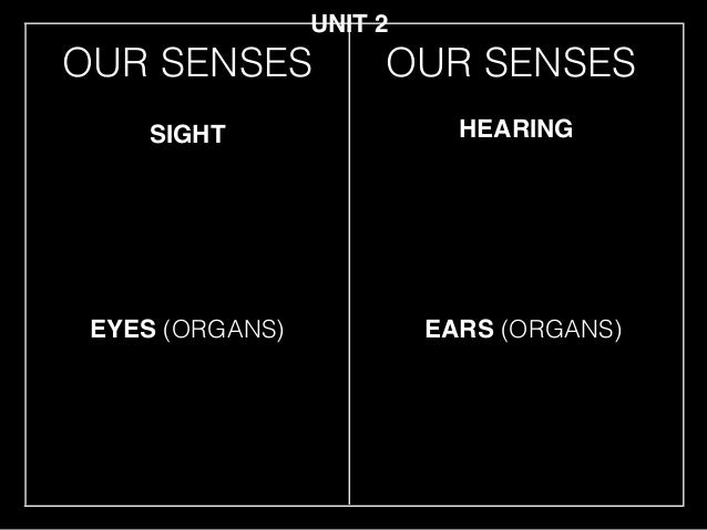OUR SENSES EYES (ORGANS) SIGHT HEARING EARS (ORGANS) UNIT 2 OUR SENSES