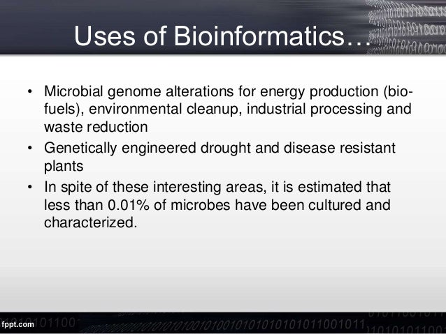 What are the best universities to study bioinformatics ...