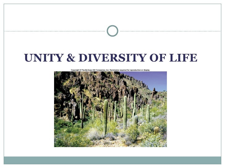 conclusion of unity in diversity Unity in diversity: an overview of the genomic anthropology of india   conclusion: this overview highlights the need to study the anthropological  structure.